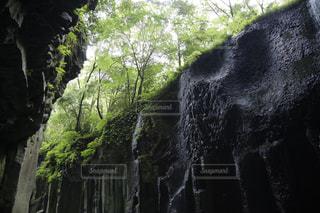 自然 - No.530938