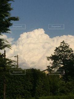 雲の写真・画像素材[535974]