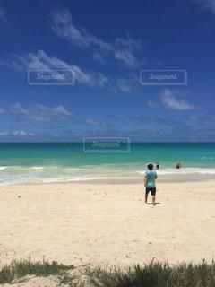 ハワイの写真・画像素材[523446]