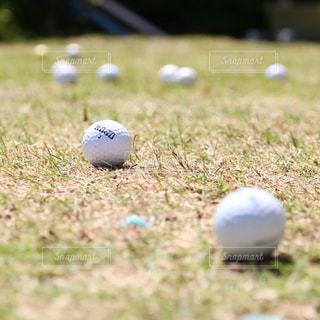 スポーツの秋にゴルフ練習の写真・画像素材[514873]