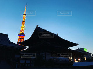 夜の東京タワーの写真・画像素材[557530]