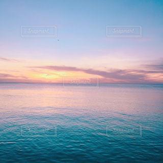 南国の写真・画像素材[516332]