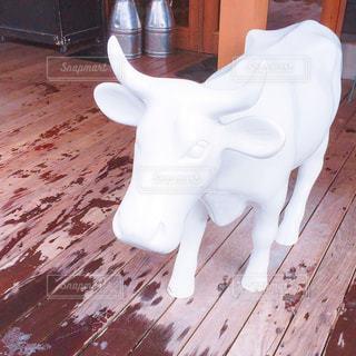 牛の置物の写真・画像素材[1049678]