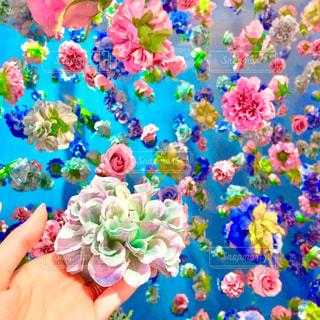 近くの花のアップの写真・画像素材[1049688]