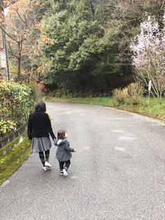散歩の写真・画像素材[515927]