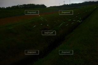 ホタルの光の写真・画像素材[2696887]