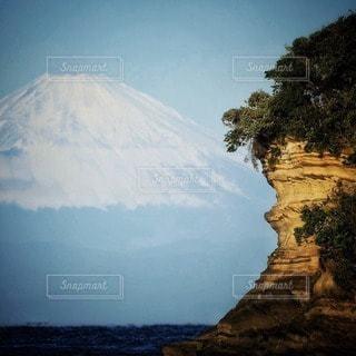 自然の写真・画像素材[11262]