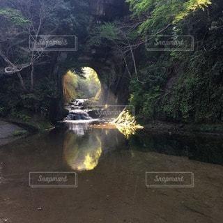 自然の写真・画像素材[97129]