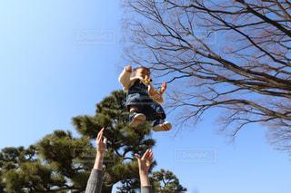 空から赤ちゃんがの写真・画像素材[1009548]