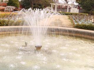水の泉の写真・画像素材[1025401]