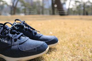 黒と青の靴の写真・画像素材[1054657]