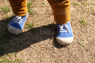 草の中に立っている小さな男の子の写真・画像素材[1083562]