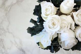 花の花束の写真・画像素材[1114453]