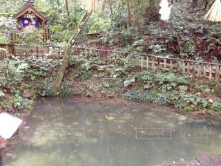 鏡の池の写真・画像素材[1118767]