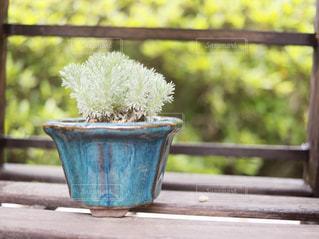 木製フェンスの上に座っている花の花瓶の写真・画像素材[1138479]