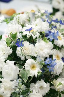 近くの花のアップの写真・画像素材[1144751]