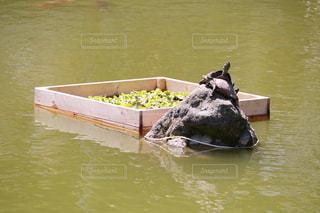 水の体の小さなボートの写真・画像素材[1164382]