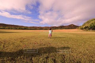 フィールドに凧の飛行少年の写真・画像素材[1234361]