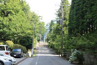 車が道の端に並んでいます。の写真・画像素材[1355496]