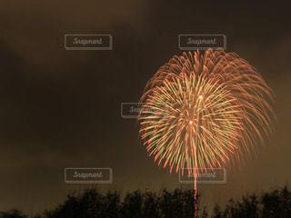空に花火のグループの写真・画像素材[1365248]