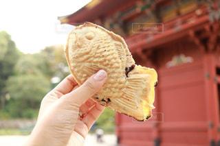 食べ物のかけらを持っている手の写真・画像素材[1596554]