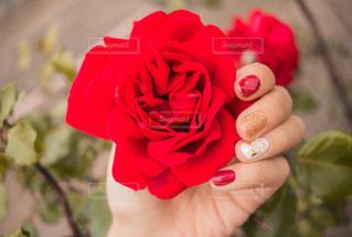 近くに花を持っている手のアップの写真・画像素材[1667653]