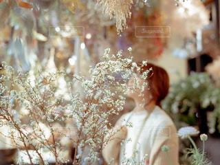 近くの花のアップの写真・画像素材[1856086]
