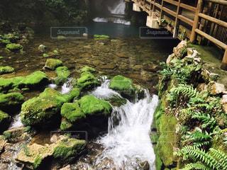 鍾乳洞から流れ出る川 - No.782906