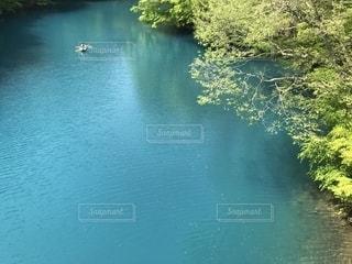 水体を泳ぐ人たちのグループの写真・画像素材[1155789]
