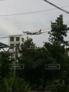 飛行機の写真・画像素材[521010]