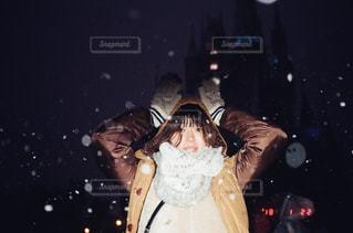 雪の日のディズニー - No.989302