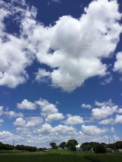 空の写真・画像素材[523411]