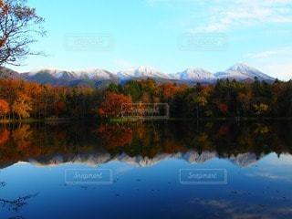 風景の写真・画像素材[36702]