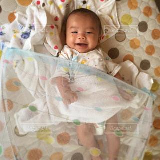 蚊帳からこんにちは♡の写真・画像素材[584533]