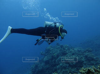海の写真・画像素材[521488]