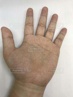左手のアップの写真・画像素材[1207767]
