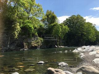 自然の写真・画像素材[523921]