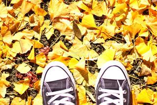 秋の足元👟の写真・画像素材[914034]