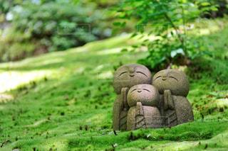 詩仙堂のかわいいお地蔵さんの写真・画像素材[1228424]