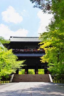 南禅寺の春の写真・画像素材[1228436]