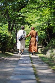 哲学の道をお散歩の写真・画像素材[1228454]