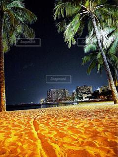 風景の写真・画像素材[529679]