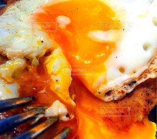 食べ物の写真・画像素材[537671]