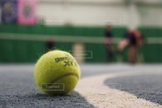 スポーツ - No.648100