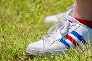 靴の写真・画像素材[523419]