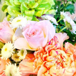 花束の写真・画像素材[1192263]