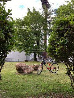 公園 - No.654804