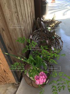 木製テーブルの上に座っている花の花瓶の写真・画像素材[1277797]