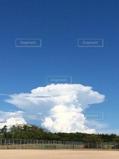 青空の写真・画像素材[1422962]
