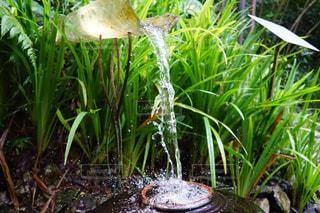 流水の写真・画像素材[851250]